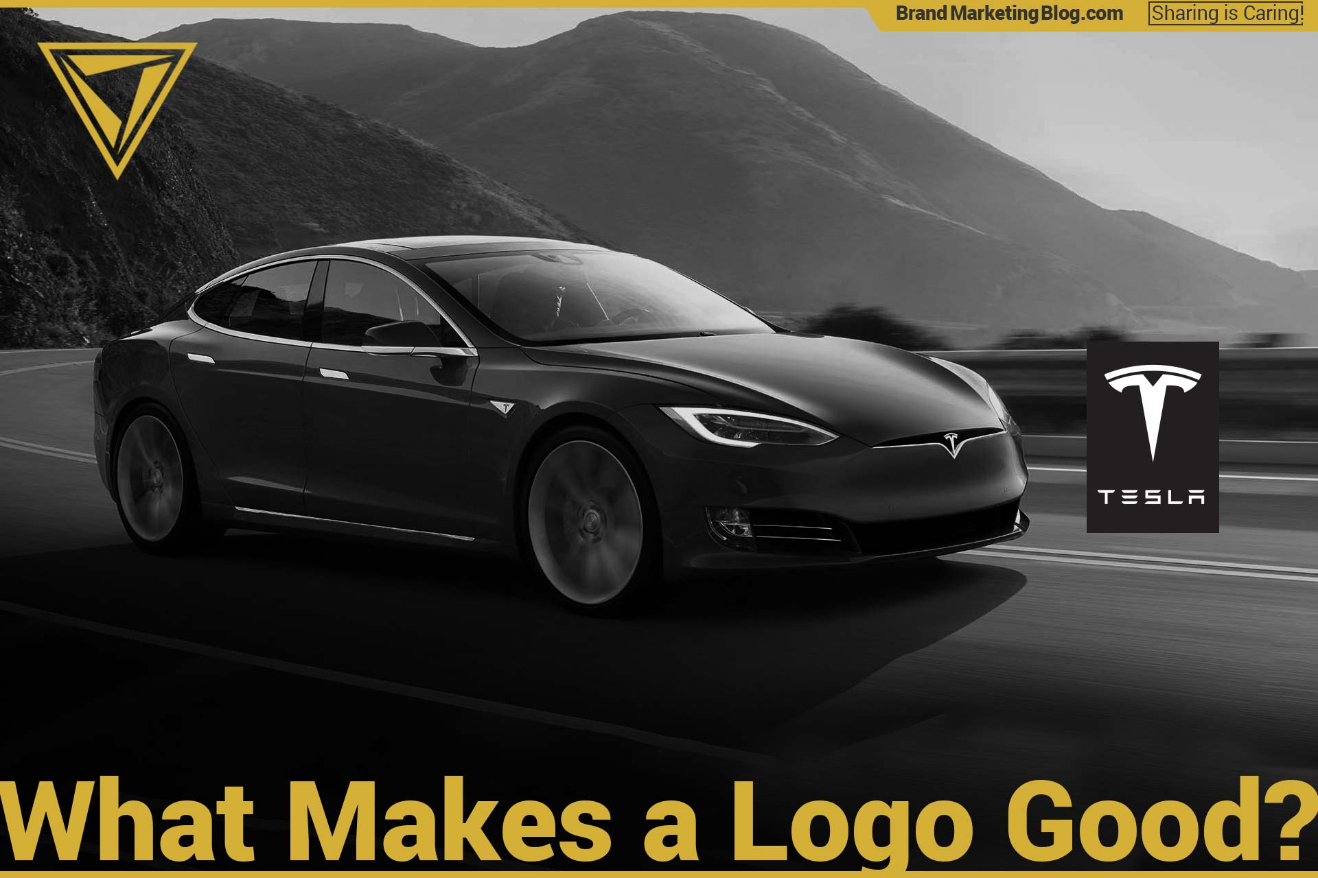 What makes a good logo? Tesla Model S and Tesla logo